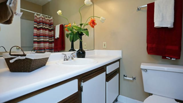 Bathroom at Halcyon Park Apartments in Montgomery, AL