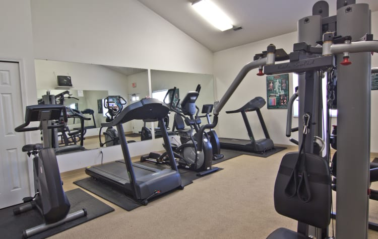 Stay healthy in our fitness center at Steeplechase Apartments & Townhomes