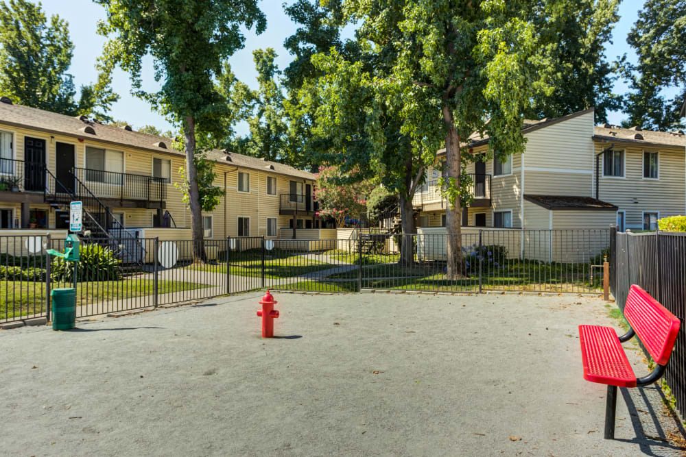 Have fun with your furry friend in the dog park at The Woodlands Apartments in Sacramento, California