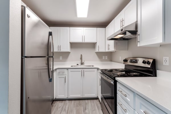 Kitchen at Madison Park Apartments