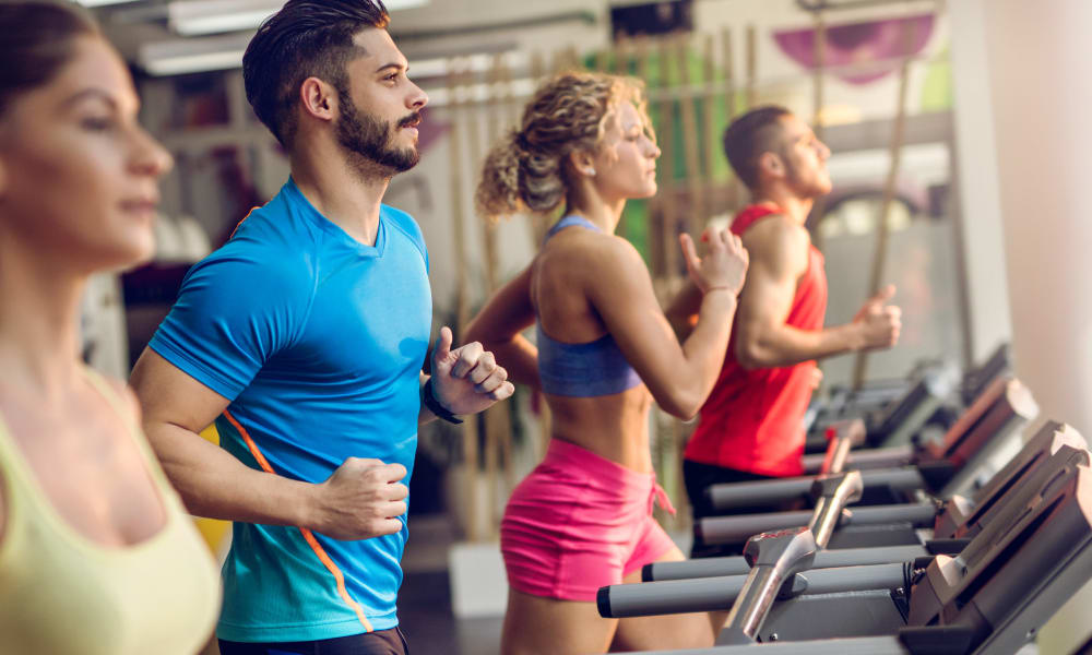 Residents on the treadmills in the fitness center at The Venue in Rochester, New York