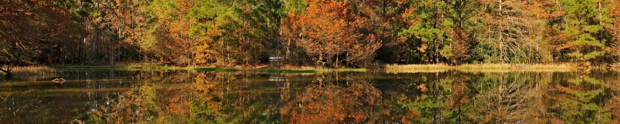 Apply to live at Hilltops in Conroe, Texas