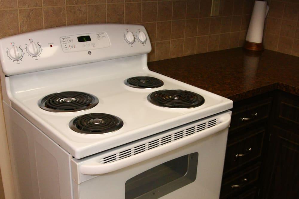 Electric stove at Terrace Lake Apartments