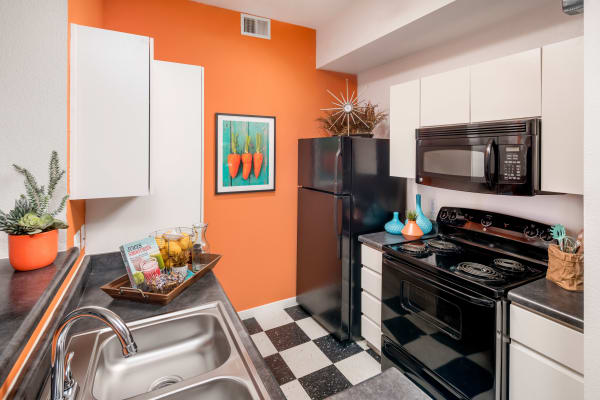Contemporary kitchen with stainless-steel sink at Tempe Metro in Tempe, Arizona