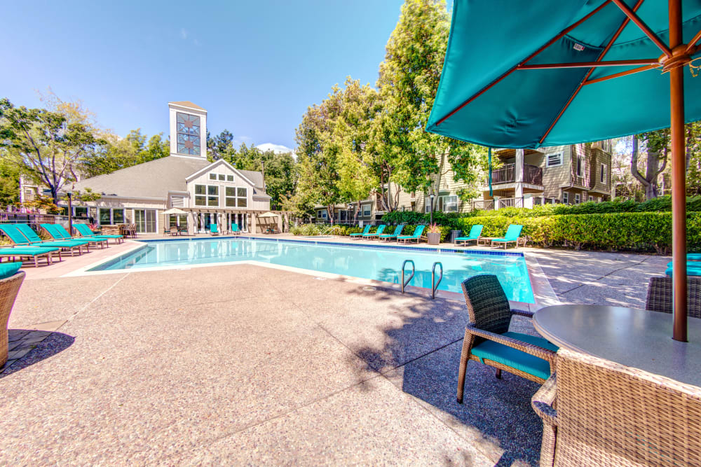 Beautiful apartments with a swimming pool at Sofi Sunnyvale