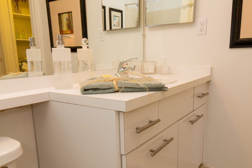 Bright bathroom with large vanity mirror and medicine cabinet in model home at Saddle Creek Apartments in Novi, Michigan