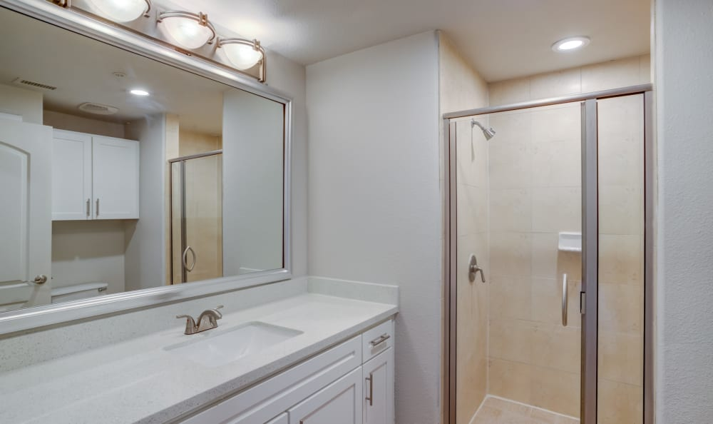 Well-lit Remodeled bathroom  San Paloma Apartments in Houston, Texas