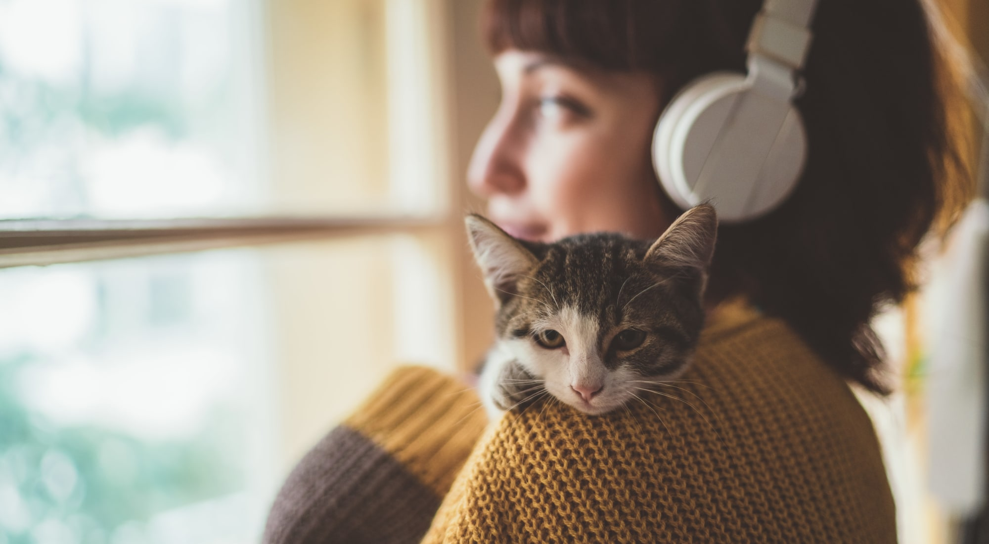 Pet-friendly apartments at The Fairways Apartment Homes in Lee's Summit, Missouri