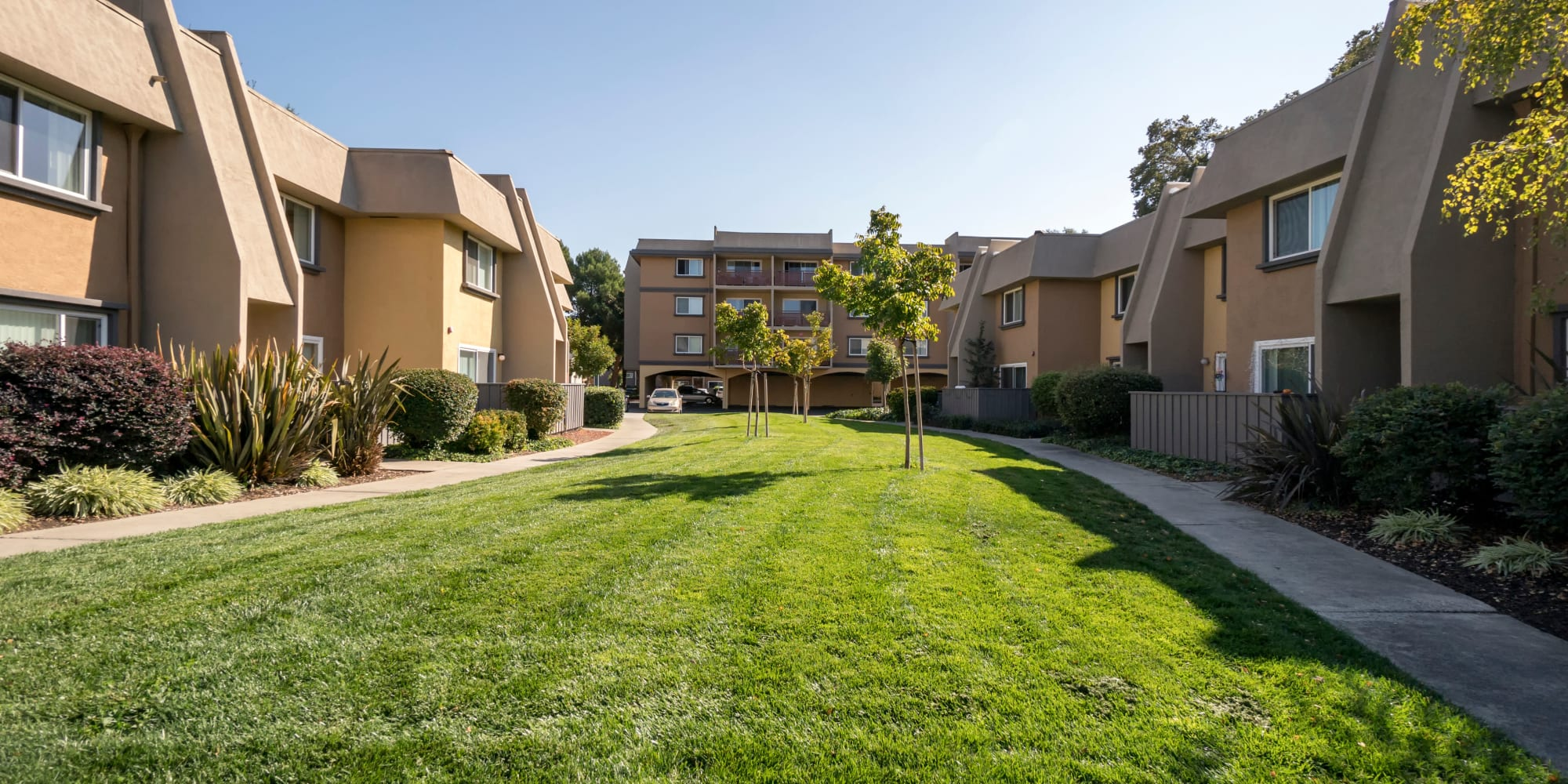 Apartments at Waterstone Fremont in Fremont, California