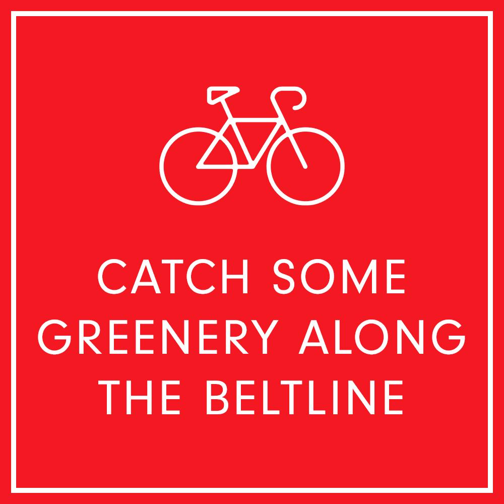 Catch some greenery along the beltline near Inman Quarter in Atlanta, Georgia
