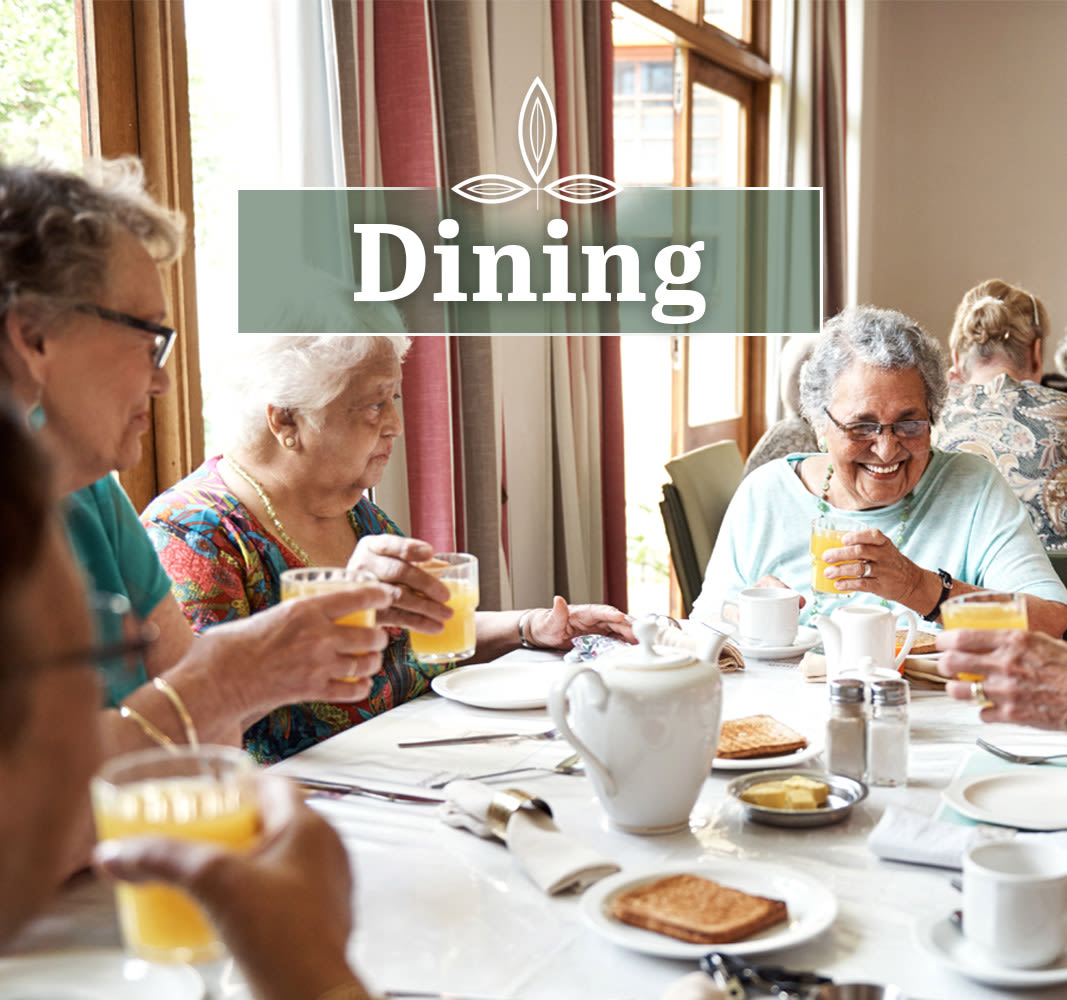 Pine Grove Crossing offers high quality senior dining in CO