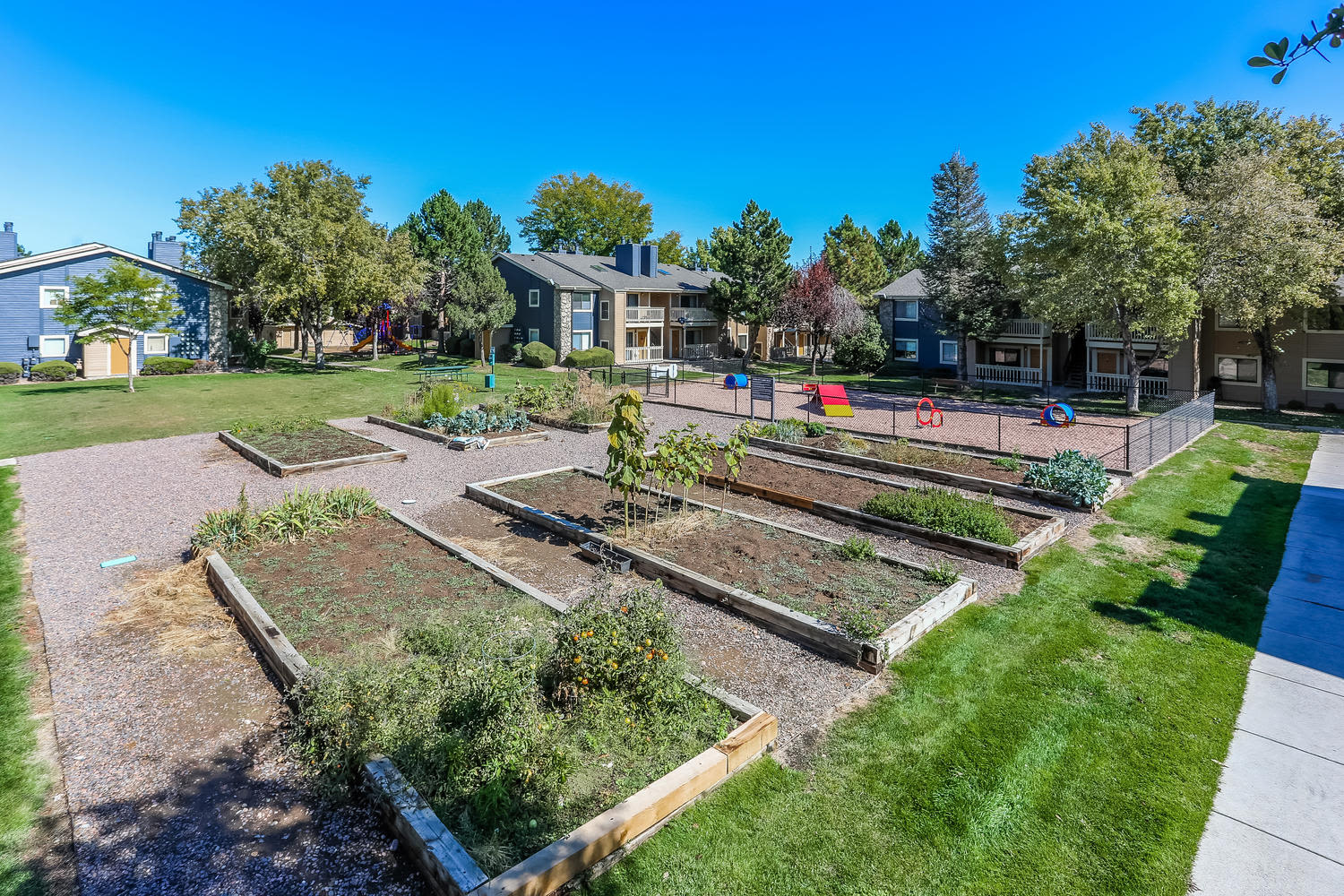 community garden at City Center Station Apartments in Aurora, Colorado