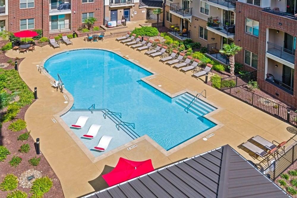 saltwater-swimming-pool-at-401-oberlin