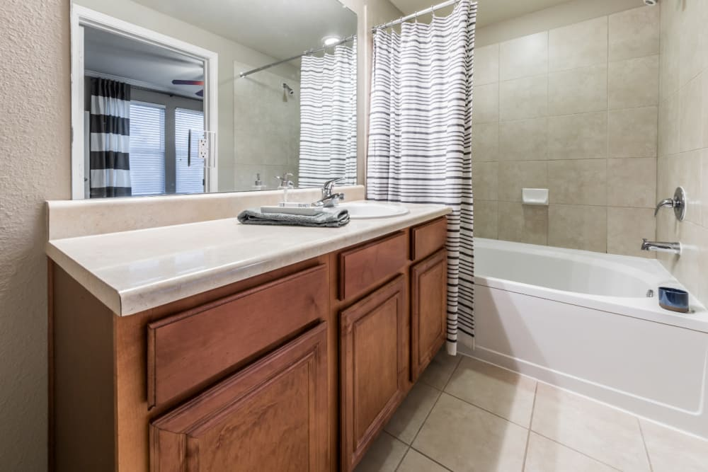Bright bathroom with full size bathtub at Marquis at The Cascades in Tyler, Texas
