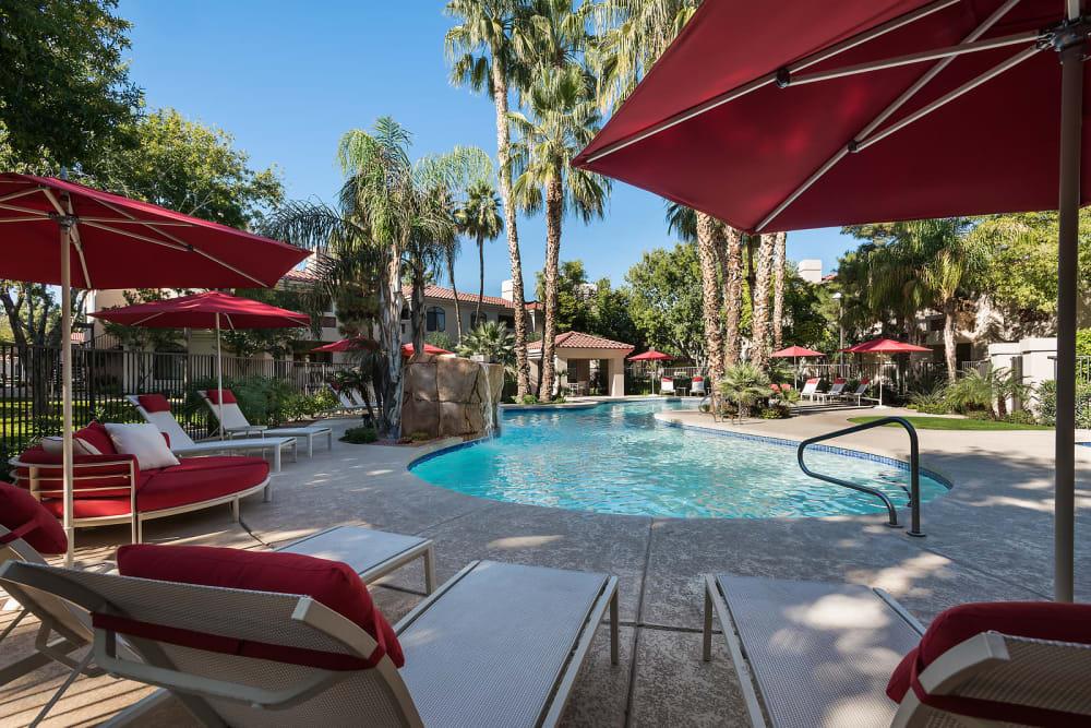 Sparkling swimming pool at San Palmilla in Tempe, Arizona