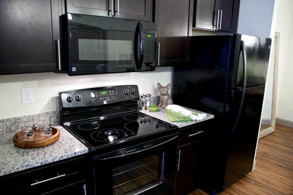 Watercourse Apartments offers a modern kitchen in Graham, North Carolina