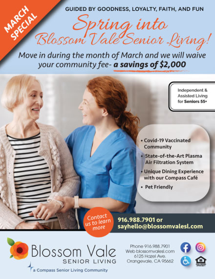 Blossom Vale Senior Living special flyer