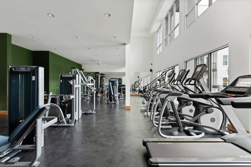 Expansive and well-equipped onsite fitness center at 4600 Ross in Dallas, Texas