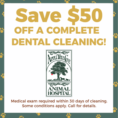 Coupon for $50 off a Complete Dental Cleaning at Apple Tree Cove Animal Hospital in Kingston, Washington