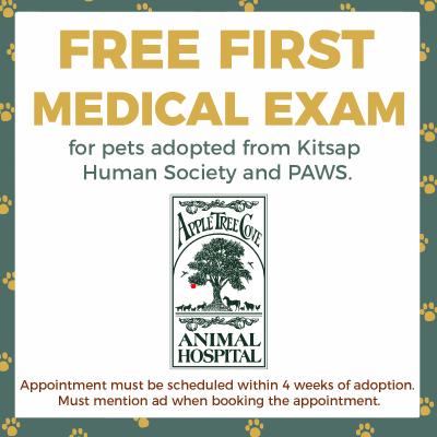 Free First Medical Exam for Apple Tree Cove Animal Hospital in Kingston, Washington