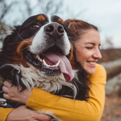 View the pet policy at Summerfield at Morgan Metro in Landover, Maryland