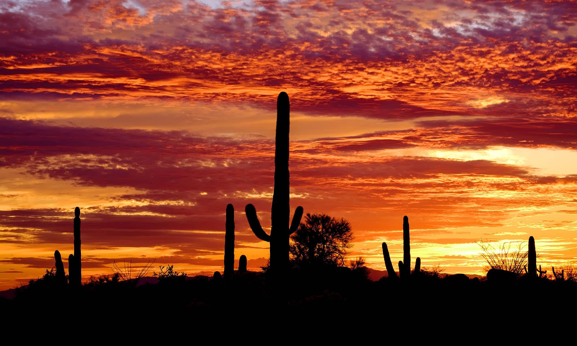 Casa Santa Fe Apartments in Scottsdale, Arizona