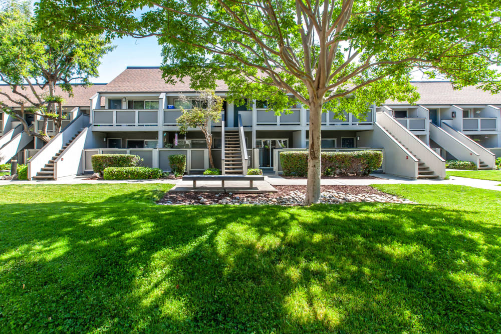 Lush green landscape at The Timbers Apartments in Hayward, California