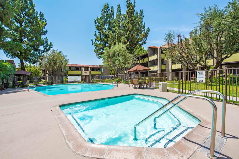 Sparkling pool and hot tub at Olive Ridge in Pomona, California