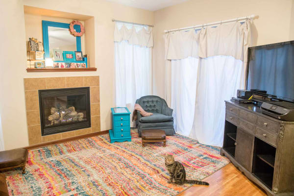 Living room with a cat by the fireplace at Providence Pointe in Johnston, Iowa