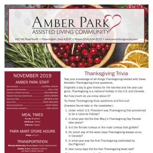 November Amber Park newsletter