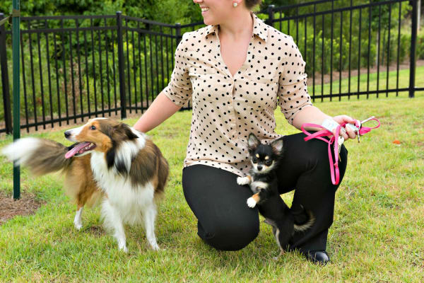 Woman with two dogs at The Addison in Baton Rouge, Louisiana