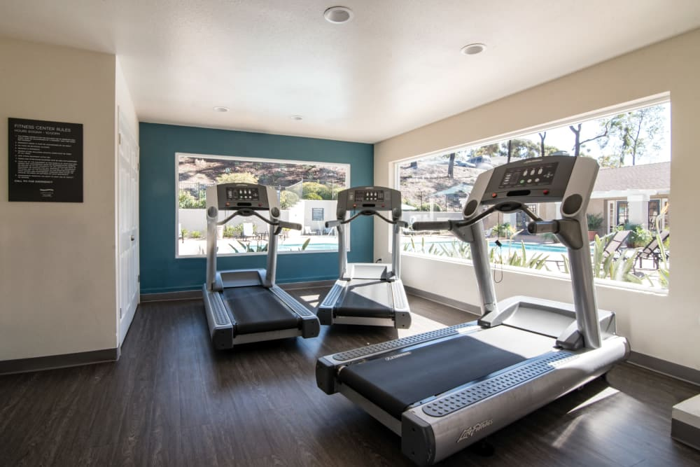 Fitness center with plenty of individual workout stations at Lakeview Village Apartments in Spring Valley, California