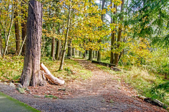 Take a walk in Portland, OR