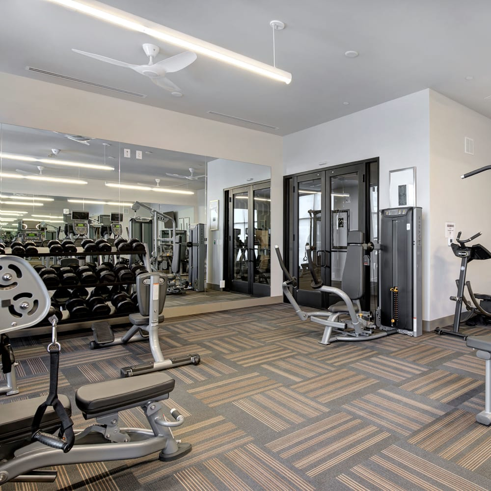 Our Apartments in Denver, Colorado offer a Gym