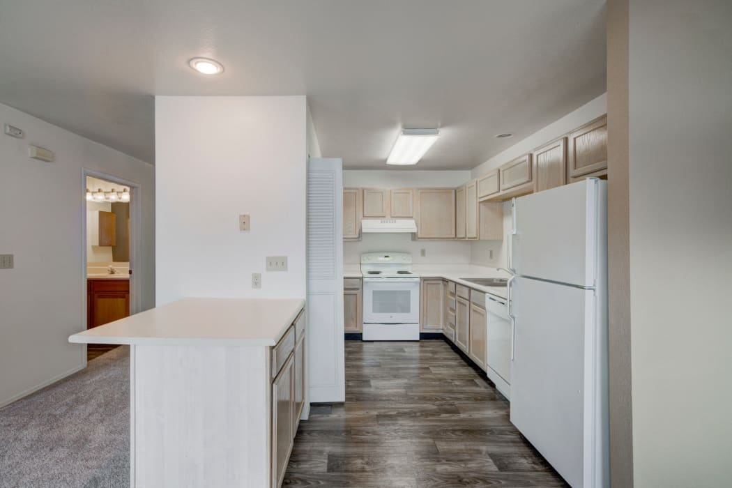 Carpeted living spaces at Mountain View Apartments