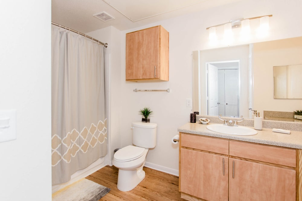 Enjoy apartments with a unique bathroom at Willow Lake Apartments