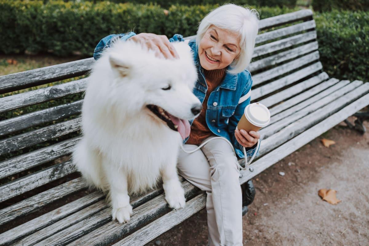 Resident petting a fluffy dog at Oxford Villa Active Senior Apartments in Wichita, Kansas