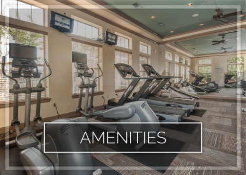 Amenities at The Landing at Mansfield in Mansfield, Texas