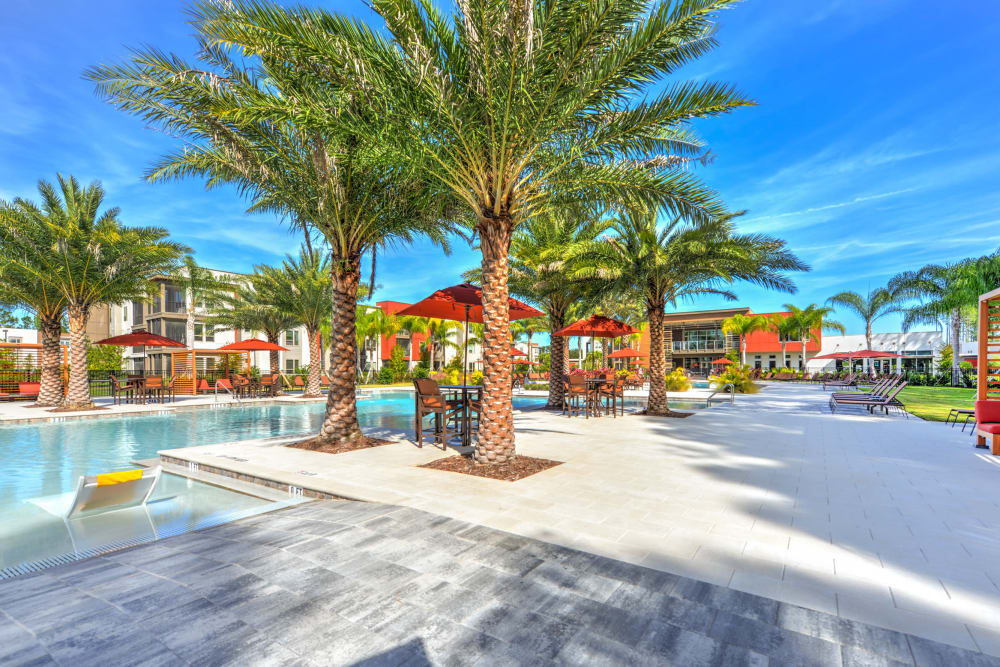 Swimming Pool at Luxor Club in Jacksonville, Florida