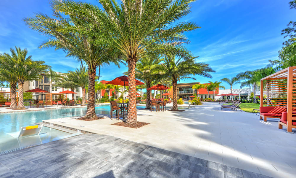 Palm trees and shaded seating near the pool at Luxor Club in Jacksonville, Florida