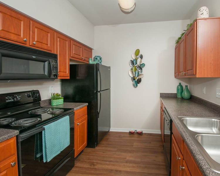 Our modern apartments at Sunrise Canyon in Universal City, Texas showcase a kitchen
