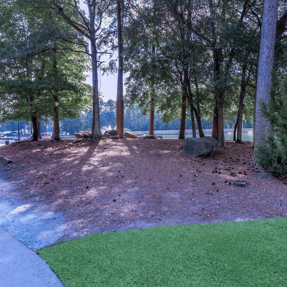 Copse of mature trees providing shade near the lake at The Bentley at Marietta in Marietta, Georgia