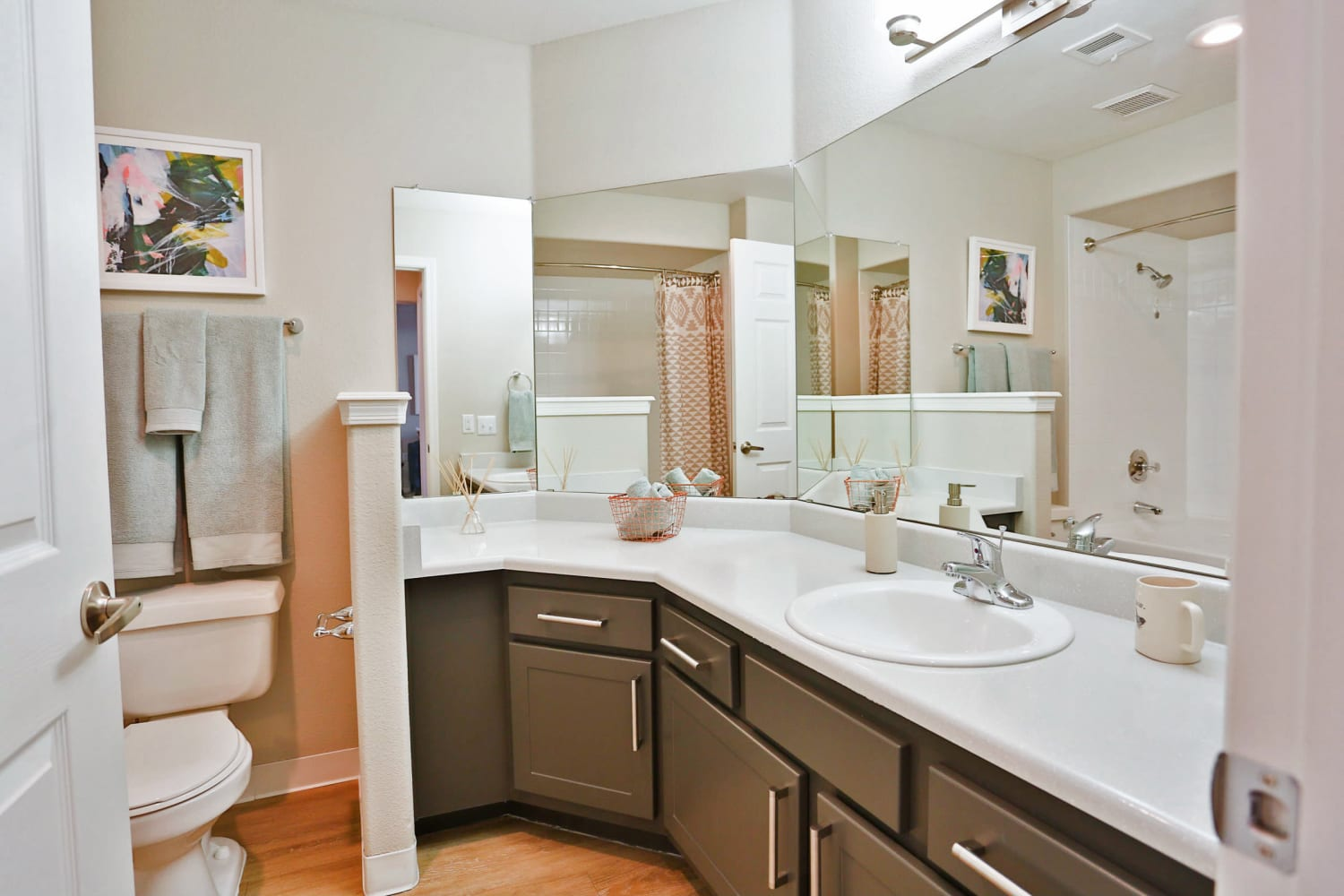 Enjoy plenty of counter space in the bathrooms at Sonoran Vista Apartments in Scottsdale, Arizona