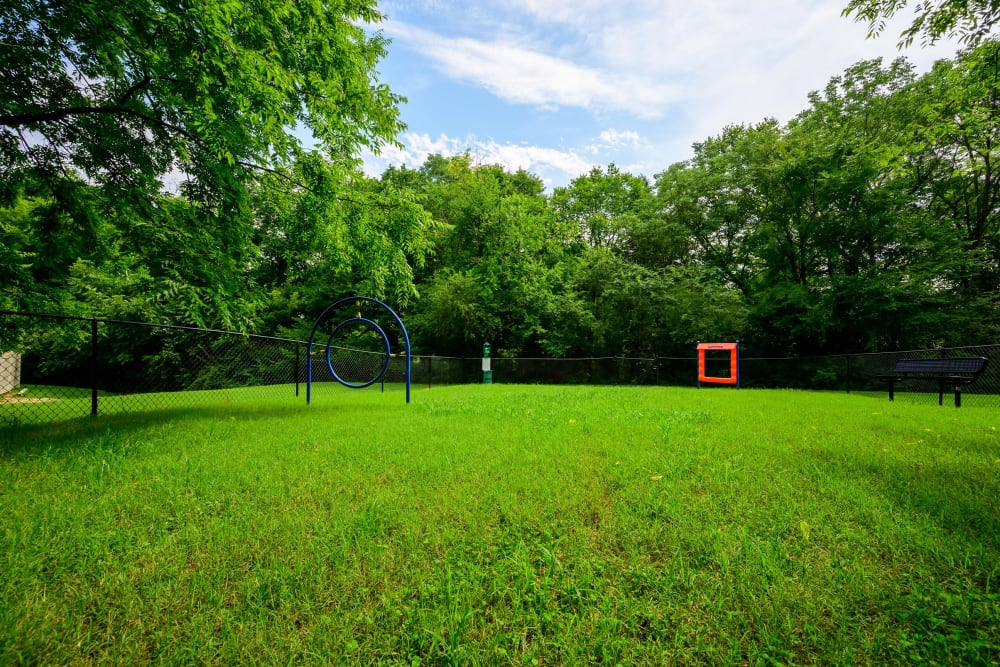 Onsite dog park with agility course and ample room to run at The Hamilton in Hendersonville, Tennessee