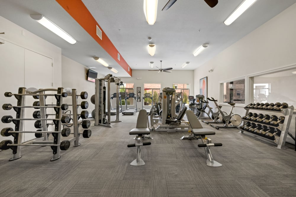 Fitness center featuring modern work out equipment at The Parc at Greenwood Village in Greenwood Village, Colorado