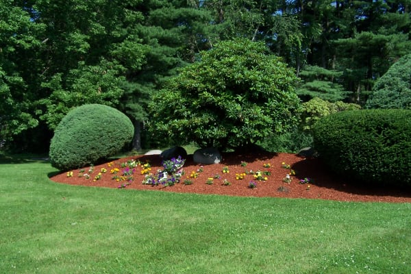 Well maintained landscaping at Westgate Arms Apartments in Salem, New Hampshire