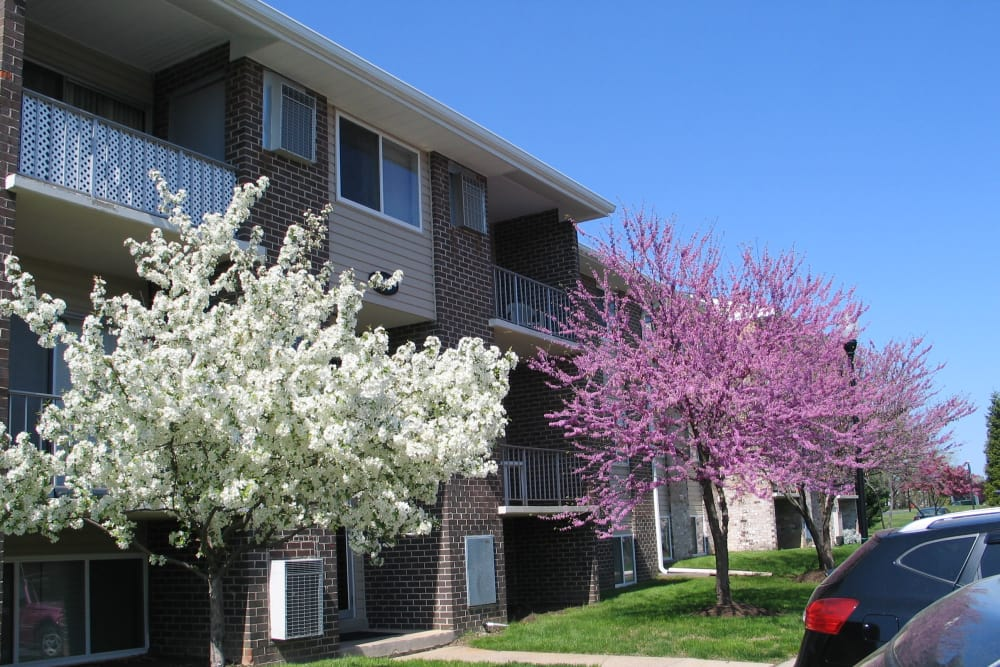 Our apartments offer a beautiful view at Commons at White Marsh Apartments