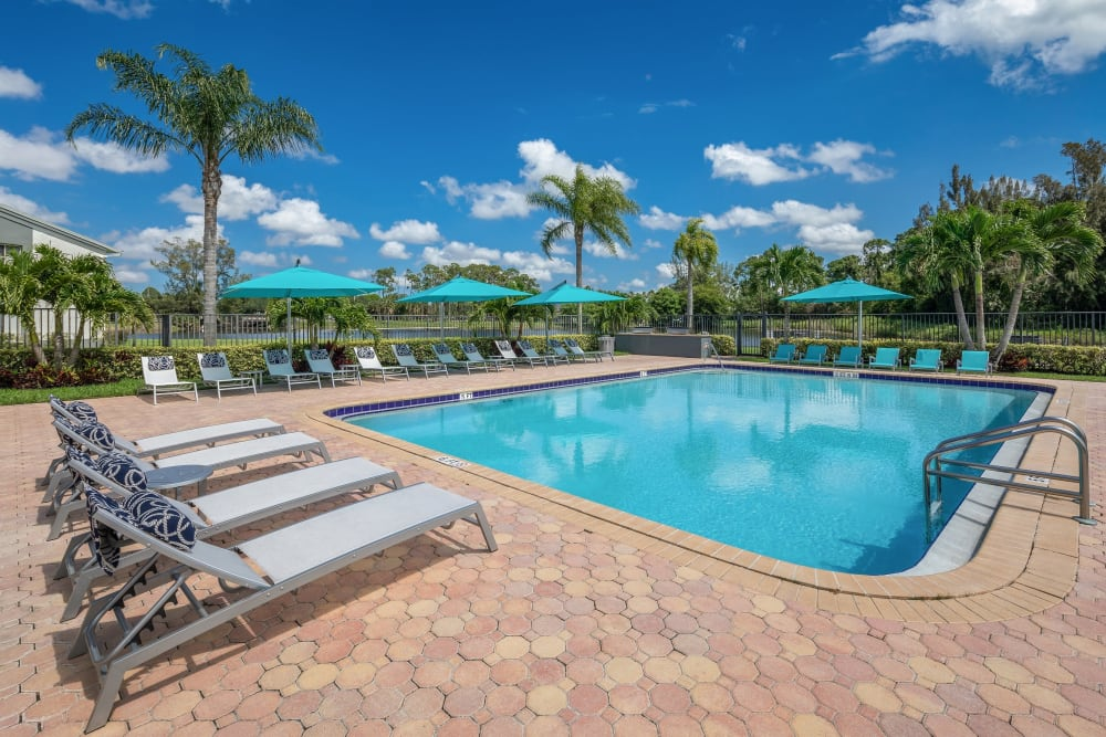 Palm trees around the pool at Verse at Royal Palm Beach in Royal Palm Beach, Florida