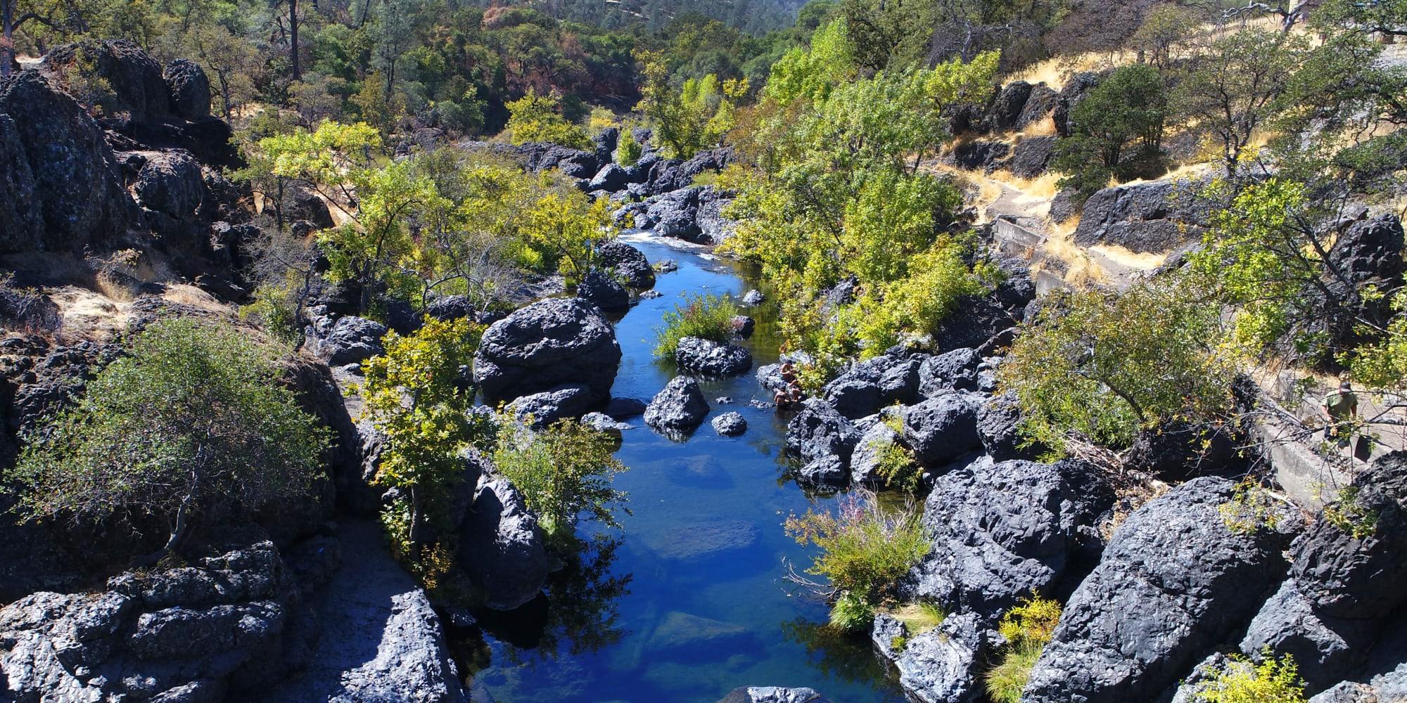 Beautiful, clear creek with riverside plants near MWS Properties in Chico, California
