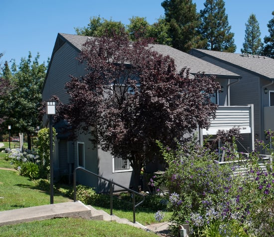 Plum Tree Apartments, a sister property to Regency Plaza Apartment Homes in Martinez, California